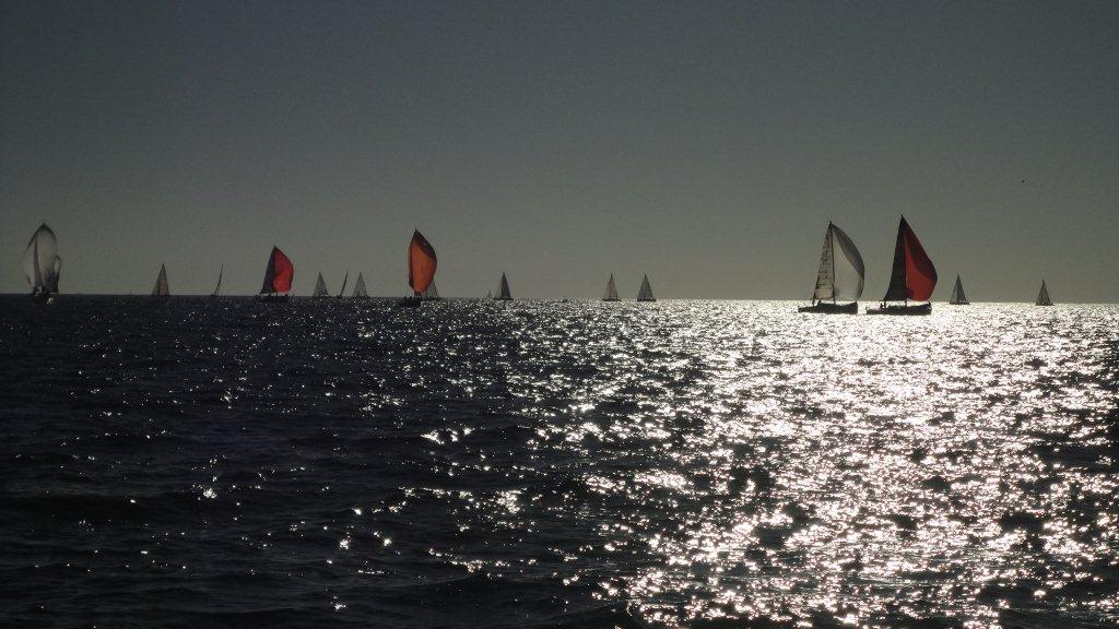 Naviguez sur les images de l'article : Automne2015-1